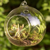 "Picture of Hanging Votive Holder Clear Glass Orb Set of 4 |5.5""Diameter